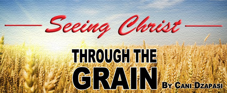 Seeing Christ Through The Grain